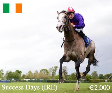 success-days-ire-main-image