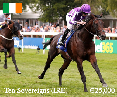 ten-sovereigns-ire-main-image