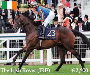 the-irish-rover-main-image